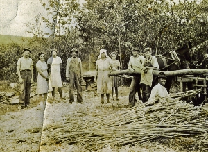 Gilreath Family making molasses from Sugar Cane